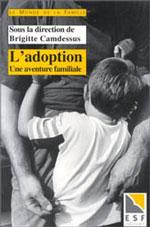 couverture du livre Les ruptures du temps dans les familles adoptives